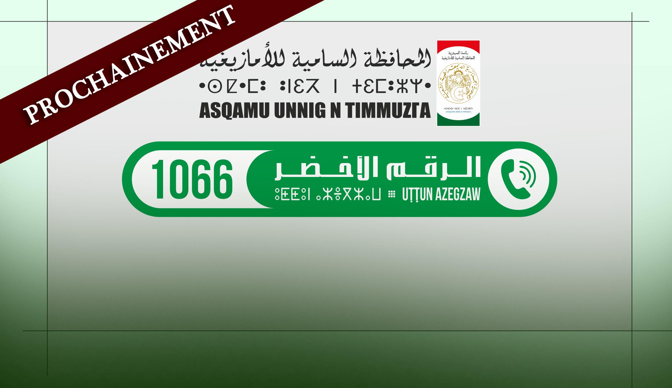 APS - Le HCA lancera ''prochainement'' un numéro vert de la traduction vers le tamazight